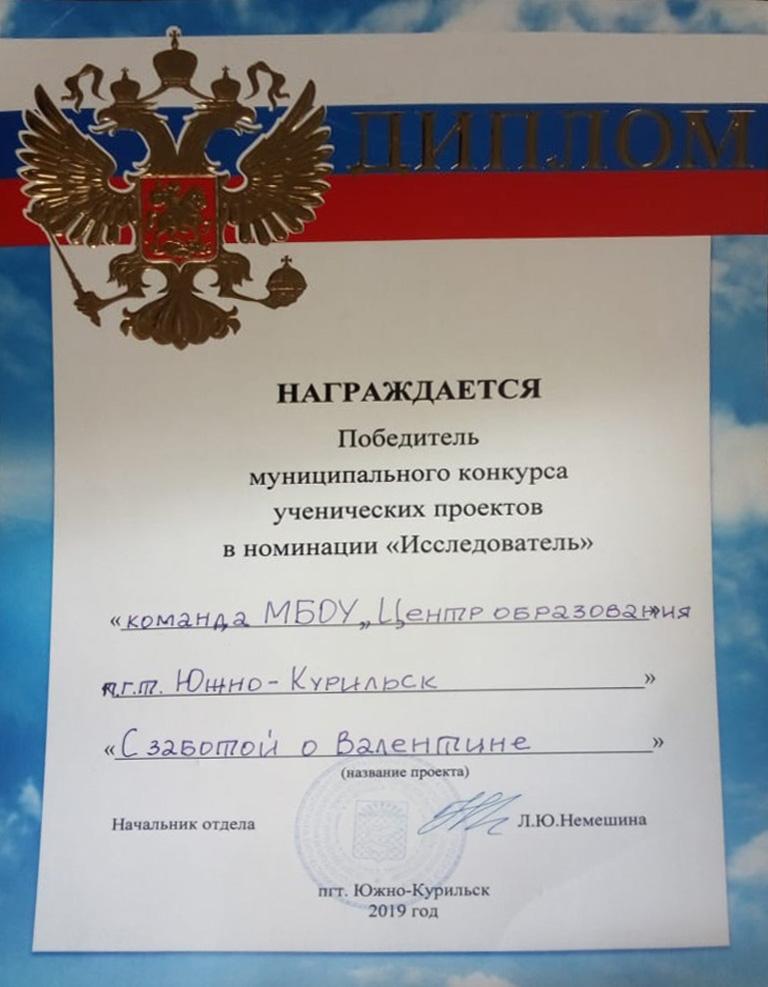 диплом победителя МК Исследователь